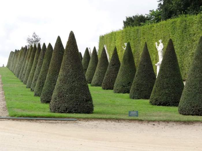 Topiaries in every shape imaginable could be found.